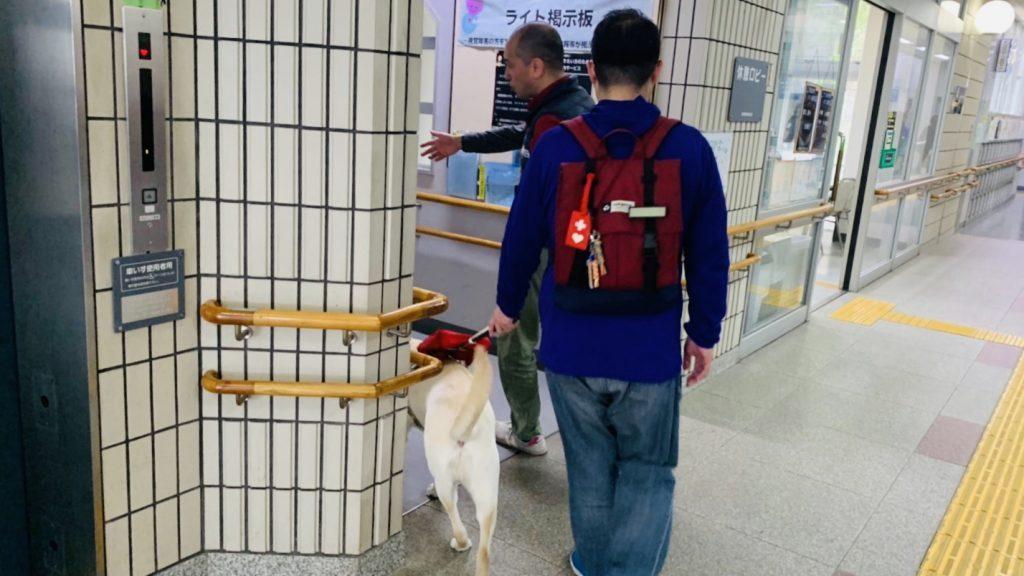 盲導犬の体験歩行をする渡辺さんを後ろから撮影した画像