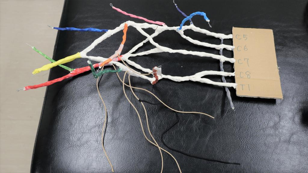針金を使って複数の神経を表した模型の画像。
