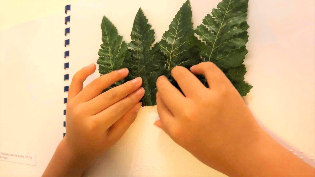 葉っぱをノートに張り付けて、触察する娘さんの画像