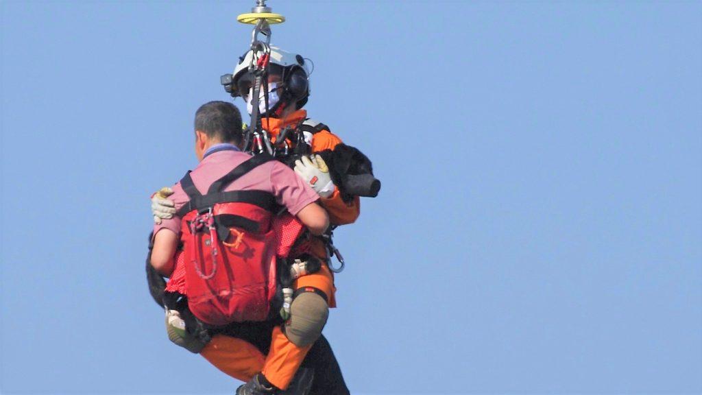 避難訓練で清水さんと盲導犬が消防隊と一緒に吊り上げられている画像。